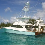 bimini-project-brown-marina-14785