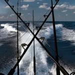 browns-marina-bimini-228